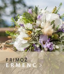 gumb_fotografi_ermec