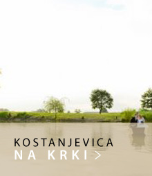 gumb_lokacije_Kostanjevica